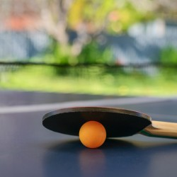 Table tennis table with racket and orange ball on backyard