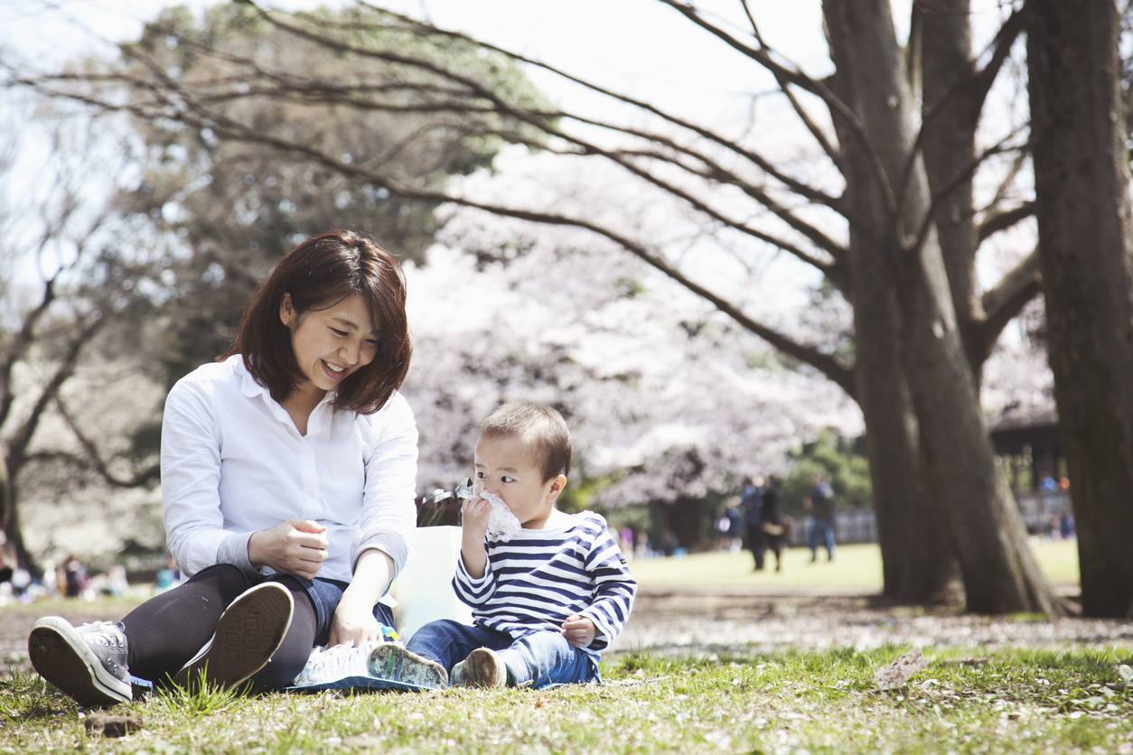 Mother and son having lunch and enjoying hanami in the park